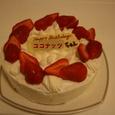 ココナッツ2才バースデーケーキ